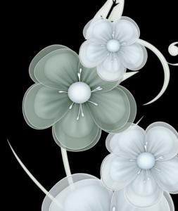 fleur1-253x300